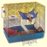 furet-cage